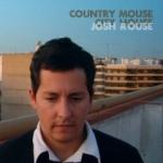 rousejosh-countrymousecityhouse-1.jpg